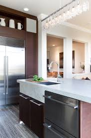 transitional kitchen designs 6 cleanliness on transitional