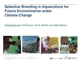 Selective Breeding in Aquaculture for Future Environments under Climate Change       February      FAO     SlideShare