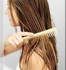 بدون شامبو نظفي شعرك!!!!! Images?q=tbn:ANd9GcQBLfSqH9oTzToTK-r4cyvZyxrZD8r89ivAIuP88-VIK5HNRj3Aqg