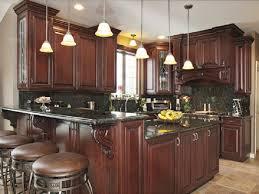 dark wood kitchen cabinets fancy plush design 20 46 kitchens with