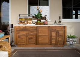 Kitchen Cabinet Inside Designs by Outdoor Kitchen Cabinets Polymer Seoegy Com
