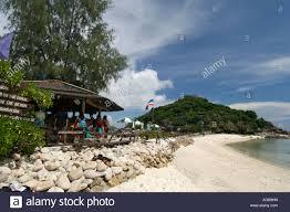 nangyuan island dive resort koh nang yuan island near koh tao