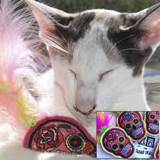 small halloween gifts stark raving cat u2014 catnip joints cat toys cat lover gifts