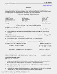 retail associate resume example resume templates jewelry sales professional jewelry sales resume templates jewelry sales professional jewelry sales associate