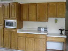 Kitchen Cabinets Designs Photos by Staining Kitchen Cabinets Ideas U2014 Readingworks Furniture