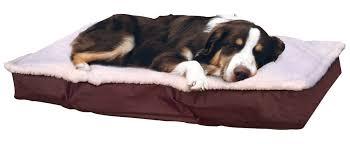 furhaven deluxe outdoor pillow dog bed u0026 reviews wayfair