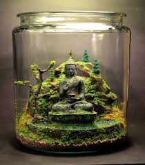 terrarium gardening with mini buddha statue a beautiful