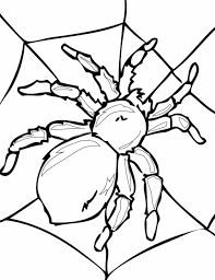 printable halloween worksheets crab spider coloring sheet spider coloring pages archives page web
