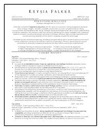 Resume Sample Director by 100 Sample Director Of Operations Resume How To Spin Your
