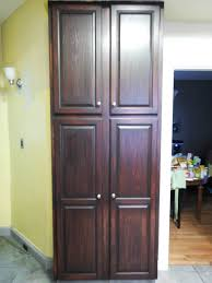 Dark Stained Kitchen Cabinets Decorating Cool Cabinets Door With General Finishes Java Gel
