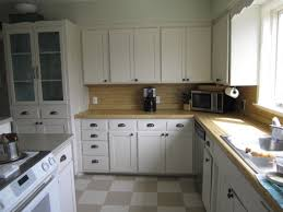 Kitchen Cabinet Doors White Appealing Contemporary Kitchen Cabinets Design Ideas Presenting