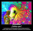 sinestesia 2