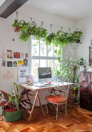 Best Office Desk Plants Plants Decoration Philodendron I Love How Easy These Plants Are