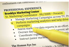 What Is Job Profile In Resume by Additional Information In Resume Best Free Resume Collection