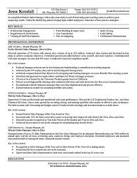 ideas about Sample Resume on Pinterest   Resume Examples