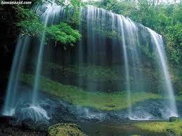 صور الطبيعة Images?q=tbn:ANd9GcQH4zhtIRod4NBHo79x5SwhCB-14wZfwv6Zp5S61q54K8eYNsbGbQ