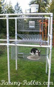 rabbit cage plans building rabbit cages is not hard build rabbit