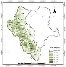 Sierra Madre Occidental Map Forests Free Full Text Geospatial Estimation Of Above Ground