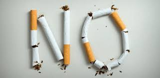 Argumentative essay on should smoking be banned   pdfeports    web     Busy market essay   FC  Argumentative essay on should smoking be banned