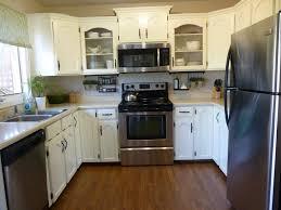 Condo Kitchen Remodel Ideas Small Kitchen Renovation Save Small Condo Kitchen Remodeling Ideas