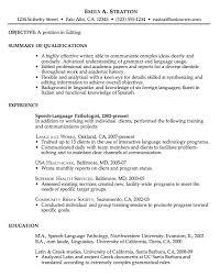 Chronological Sample Resume for Editing Job