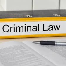 LLM Criminal law   Subjects   LLMStudy com