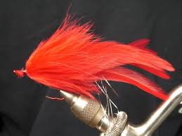 how to tie a red shark fly with silver flash youtube