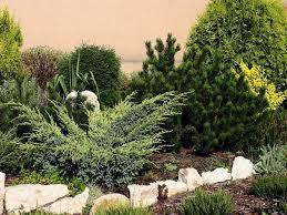 Home Landscape Design Tool by Online Landscape Design Course U2014 Home Landscapings Online