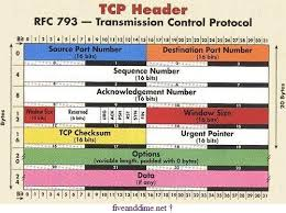 estructura TCP