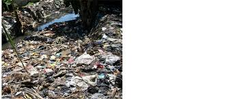 Illegal dumping of solid wastes in the vicinity of a seasonal stream  Scientific Research Publishing