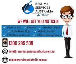 professional resume example p