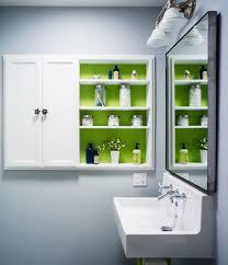 Handicap Bathroom Designs Innovative Wall Mount Paper Towel Holder In Bathroom Transitional