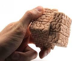 Как предупредить преждевременное старение мозга