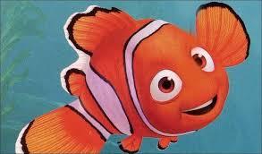 Marine Aquarium Imports: Finding Nemo not so easy, new study says