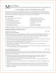 hair stylist resume sample resume template for customer service free resume example and employment program representative sample resume sample resumes for customer service executive management resume samples