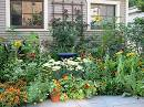 Before & After: John's Medicinal Herb Garden —studio g garden ...