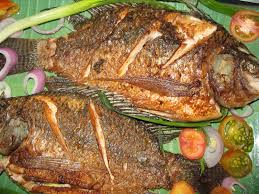 Image of fried tilapia