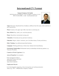 Example Of Cv For Job   fragtk   resume simple Resume CV   Cover Letter   Headache