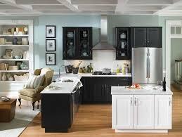Black Kitchen Designs Photos 325 Best Kitchen Mini Makeover Images On Pinterest Kitchen Ideas