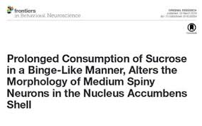 Links to Dr Bartlett     s research papers on stress  resilience and sugar addiction MiGGi Matters