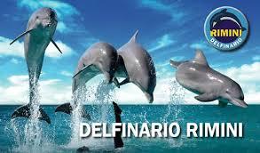 RIMINI Delfinario
