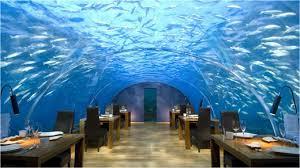 Weird Restaurant