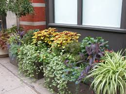 Rooftop Garden Ideas Decoration Inexpensive Gardening Ideas With Colorful Flower