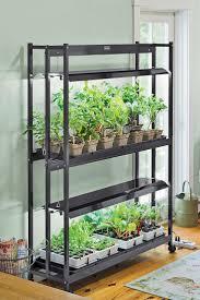indoor window shelves for plantsplant shelves for indoor plants