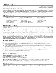project management cv samples management cv template managers jobs       director of engineering happytom co