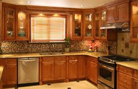Maple Shaker Style Kitchen Cabinets Kitchens With Maple Cabinets Lucasdecorators Com
