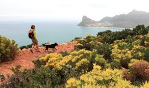 Cape Town     s best hikes and walks Getaway Magazine