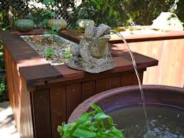 Great Fish Options For Your Backyard Aquaponics System - Backyard aquaponics system design