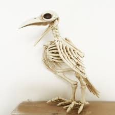 halloween skeletons decorations crazy bone skeleton raven plastic animal skeleton bones horror