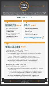 Professional Resume Template  professional hr resumes   template     Professional Resume Format        Resume Writing Service   professional resume template
